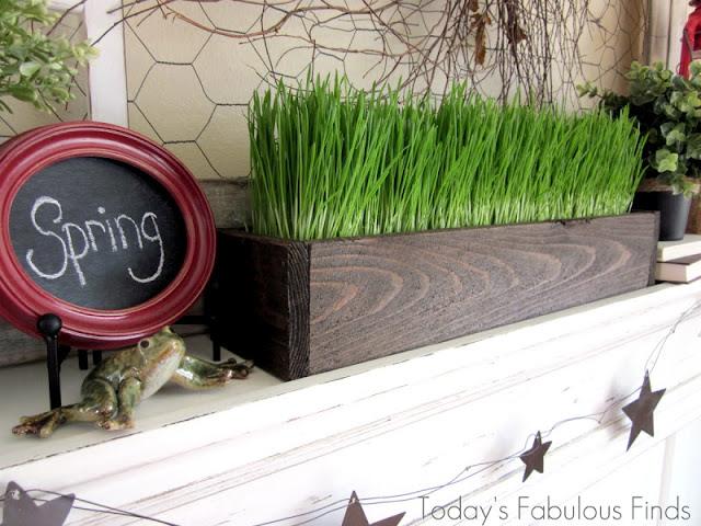 Wheat Grass on Spring Mantel_4216